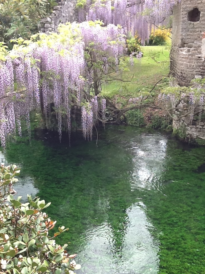 Image for The Garden of Ninfa